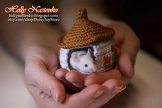 Hey, I found this really awesome Etsy listing at https://www.etsy.com/listing/184792971/unique-small-pet-hamster-sugar-glider
