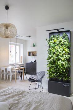 Graphite Black Naava smart green wall.