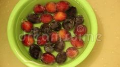 Video about Washed fresh plums in a green bowl. Video of fresh, season, clip - 76654838 Green Bowl, Fruits And Vegetables, Plum, Fresh, Food, Fruits And Veggies, Essen, Meals, Yemek