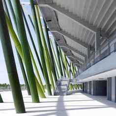 GMP Architekten. Bao'an Stadium, for the Universiade games in Shenzhen