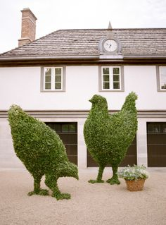 Topiary Larger-than-life boxwood chickens - A fanciful setting on family property, an heirloom ball gown, and a homemade wedding cake completed the enchanting picture for this midwestern couple. Topiary Garden, Boxwood Topiary, Garden Gnomes, Garden Fun, Parks, Martha Stewart Weddings, Hedges, Yard Art, Garden Inspiration