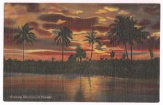 Florida Sunset, vintage linen postcard Night Sights, Orange Sky, Vintage Florida, Vintage Linen, Vintage Postcards, Paradise, Tropical, Sunset, Dark