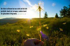 """Wie man Offenbarung und Inspiration für sein Leben empfängt (Richard G. Scott) """"Warum möchte der Herr, dass wir zu ihm beten und ihn um etwas bitten? Weil genau das der Weg ist, wie Offenbarung empfangen wird."""" https://www.lds.org/general-conference/2012/04/how-to-obtain-revelation-and-inspiration-for-your-personal-life?lang=deu"""