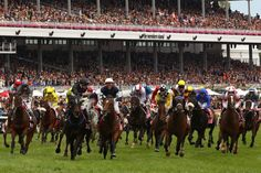 melbourne cup - Google Search Melbourne Cup, Homeland, Racing, Australia, Google Search, Running, Auto Racing
