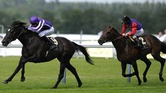 So You Think [left] powered clear of Carlton House to win Wednesday's Prince of Wales's Stakes