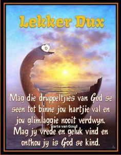 Good Knight, Goeie Nag, Afrikaans Quotes, Good Night Wishes, Special Quotes, Quote Of The Day, Good Morning, Qoutes, Words