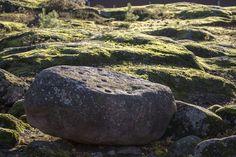 Esihistoriallinen kuppikivi sijaitsee lähellä Korkeasaaren korkeinta kohtaa.