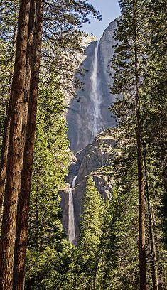 Yosemite Falls, California -- Tony Crehan Photography