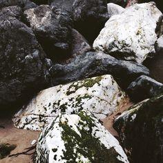 Pacific ocean rock. Wildthorne on Instagram
