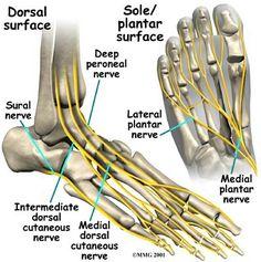 La tobillo de en el de pie nervios cirugía después