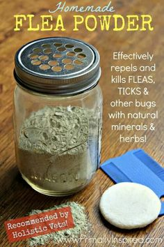 Homemade flea powder for dogs.  http://homestead-and-survival.com/homemade-flea-powder-for-dogs/