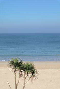 The beautiful white soft sands of Carbis Bay in Cornwall, around the corner from St. Beautiful Buildings, Beautiful Landscapes, Most Beautiful Beaches, Beautiful Places, Places To Travel, Places To Visit, Cornwall Beaches, South West Coast Path, Clean Beach