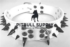 We are the #1 supplier for all of your pitbull products