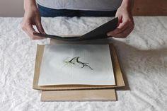 making summer seaweed prints