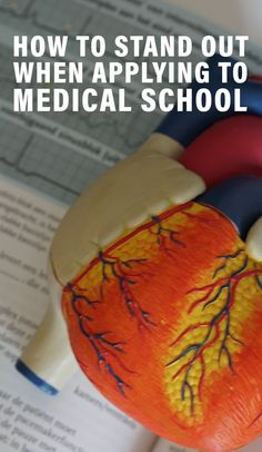 Learn what's required when applying to medical school and how to stand out in each area of your med school application. Health And Fitness Tips, Health Advice, Health Care, Getting Into Medical School, Natural Remedies For Uti, Online College Classes, Student Loan Forgiveness, School Application, Healthy Diet Tips