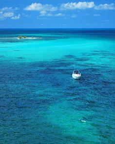 Snorkeling Bahia Honda State Park