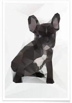 https://www.juniqe.de/french-bulldog-premium-poster-portrait-70945.html