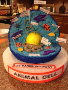Animal Cell Model Ideas: Cake, Cookies, Pizza & How to Make It 3d Animal Cell Project, 3d Animal Cell Model, Edible Cell Project, Plant Cell Project, Cell Model Project, Cell Project Ideas, Biology Projects, Science Projects, School Projects