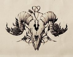 Ink pen skull drawing. by Maria Tiurina, via Behance