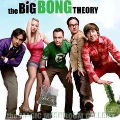 Big bong theory BAZINGA Penny bang funny meme comedy