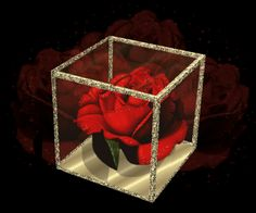 flowers animation images | Animated Lovely Rose Flower Pics | All Flowers | Send Flowers Comments ...