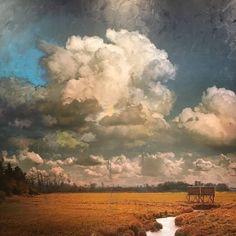 Canadian Painters, Canadian Artists, Forest Color, Landscape Paintings, Oil Paintings, Art Moderne, Art Plastique, Pretty Art, Ciel