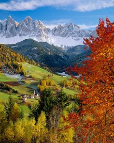Trentino-Alto Adige, Italy by SalvadoriArte autumn in the Mediterranean, Dolomites, Bolzano district, South Tyrol Wonderful Places, Great Places, Places To See, Beautiful Places, Landscape Photography, Nature Photography, Travel Photography, Places Around The World, Amazing Nature