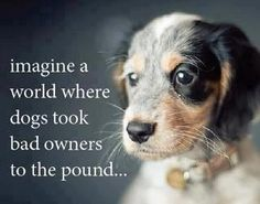 Imagine a world where dogs took bad owners to the pound...