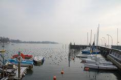 Blick in den Fischerhafen von #Wasserburg am #Bodensee