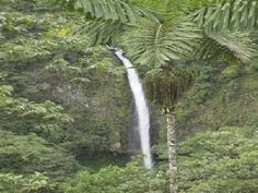 La Fortuna Waterfall, El Arenal, Costa Rica