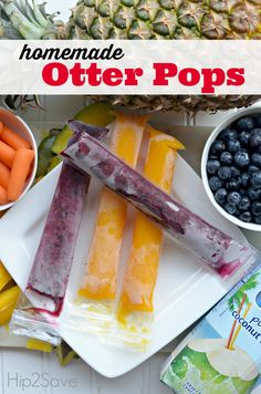 Homemade Otter Pops (Blueberry Coconut and Mango Carrot Recipes) by  Hip2Save