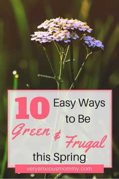 *DISCLOSURE - This post may contain affiliate links however, I will never recommend anything that I do not believe in and/or use myself.Are you looking for ways that your home and family can be green this spring?Would you also like to save some money and …