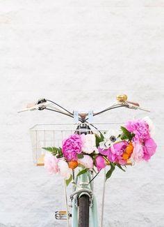 my bike needs flowers!