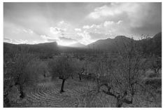 This black and white sunset was shooter out of the old majorcan train in the way home from Port de Soller to Soller.