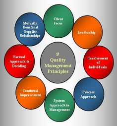 The 8 key principles below aren't auditable, however they are basic attributes requirements of any quality management system (QMS). They have been taken from ISO 9001 Quality Management Systems - fundamentals and vocabulary, which has served as a basis for the new ISO 9001:2008 standard. Visual Management, Project Management, Value Stream Mapping, 6 Sigma, Information Visualization, Lean Six Sigma, Service Quality, Workplace Safety, Strategic Planning