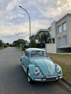 #beetle #fusca Vans, Vw Bugs, Vw Volkswagen, Vw Beetles, Muscle Cars, Punch, Automobile, Future, Classic