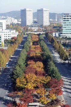 Daejeon,Korea Daejeon, South Korea, River, Outdoor, Color, Landscape Photography, Paisajes, World, Outdoors