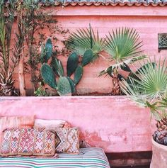 wowwww this is our dream combo .Light pink and cactus and palms .Mix up those plants for a beautiful and great desert vibe. BEST cactus decoration, succulents decor, cactus home decor, cactus decor ideas Outdoor Spaces, Outdoor Living, Outdoor Decor, Outdoor Lounge, Outdoor Daybed, Garden Inspiration, Color Inspiration, Exterior Design, Interior And Exterior