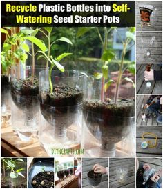 Recycle Plastic Bottles into Self-Watering Seed Starter Pots