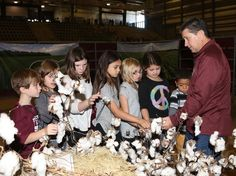 Agricultural event teaches about local farm products
