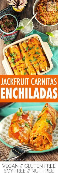 Jackfruit Carnitas E