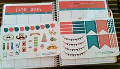 June Sticker Collection for your Erin Condren by ThePlannerFanatic