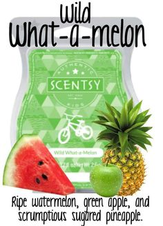 Scentsy UK : Wild What-a-Melon Scentsy Bar: Your little wild one will love this fun and fruity fragrance, bursting with ripe watermelon, green apple and scrumptious sugared pineapple. If you are a fan of candles, you will be amazed at Scentsy - a super simple system comprising of beautiful warmers & highly fragrant wax cubes which are melted electrically. No flames, no smoke, no soot! Click to visit my website to find out more!