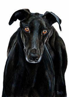 Greyhound Whippet Galgo Espanol Art Print Dog door TanjaOnTheWall