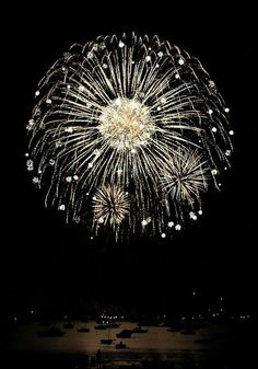 Fireworks for logo? Maybe incorporate in monogram? Invitations?