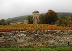 Chateau Gevrey-Chambertin