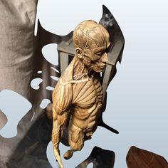 Anatomy sculpture