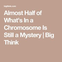 Almost Half of What's In a Chromosome Is Still a Mystery   Big Think