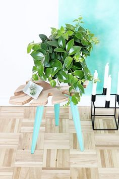 Teal Sidetable Holding Beautiful Greenery -10 Fascinating DIY Side Table Designs To Spice Up The Whole Look