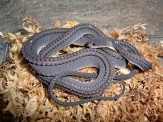 The Dragon Snake or Javan Mudsnake, Xenodermus javanicus.... I like the texture I'd be afraid of him